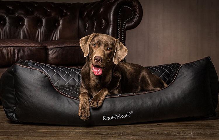 Hundebett, Hundedecke und Hundematte von Knuffelwuff jetzt online kaufen