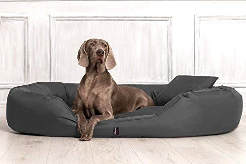 tierlando® SV4-02 Orthopädisches Hundebett SAMMY VISCO ROBUST Gr. XL 110cm Graphit Grau
