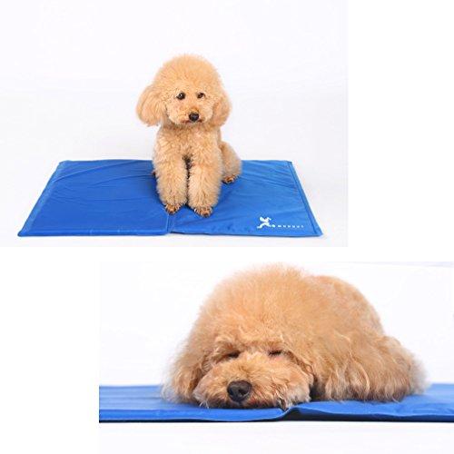 Hoopet® Kühlmatte für Hunde M 65x50CM Haustier Cooling Pad Mat Kissen Kühles Schlafbambusbett