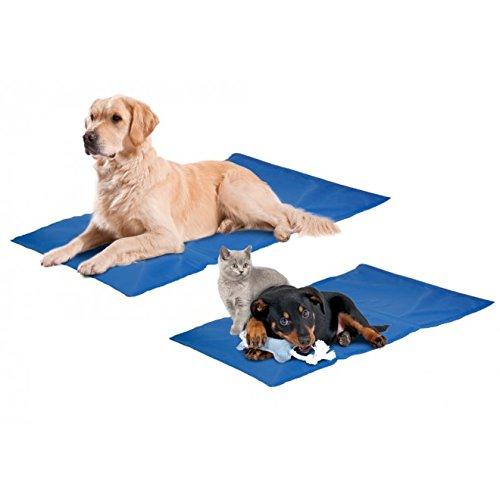 Aktiv Kühlkissen Fresk für Ihren Hund oder Katze funktioniert ohne vorkühlen Größe: S L: 50 cm B: 40 cm S blau Hundematte Kühldecke Kühlmatte