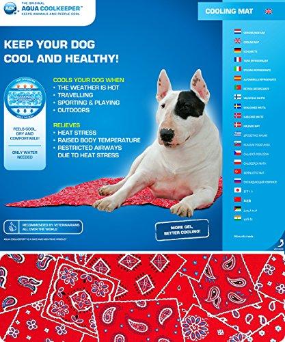 Aqua Coolkeeper 13Kühlmatte für Hunde rot West Größe XXL