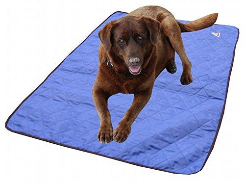 Hunde-Kühlmatte Hyperkewl, Größe S, ca. 60 x 48 cm, blau