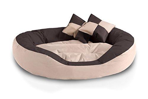 BedDog 4in1 Hundebett SABA L bis XXXL, 7 Farben wählbar, abwischbar, Hunde-kissen,Hunde-sofa,Hundekorb,Schlafplatz,Tierbett,Liege-kissen, mit Wendekissen, beige/braun Größe XL,oval-rund